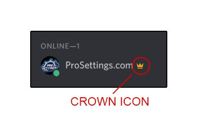 How To Remove the Crown Owner Icon Next to Your Name in Discord
